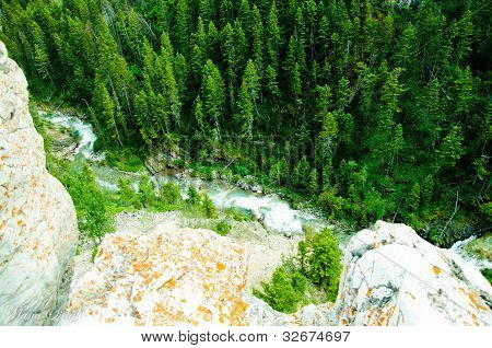 River running through forest by cliff