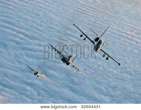 MiG-29 and L-39 Albatros