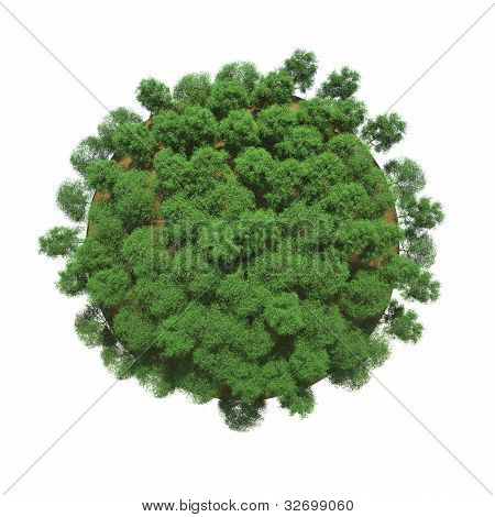 Green Trees On A Small Planet