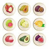 Tropical Fruits Stickers Vector Illustrations Set. Sliced Exotic Pomelo, Guava, Kumquat, Dragon Frui poster