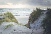Nature Reserve Skallingen At The Northern Sea Denmark poster