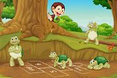 pic of hopscotch  - Turtles playing hopscotch on white - JPG