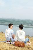 Постер, плакат: Вертикальный выброс гомосексуальные пары на пикник на берегу озера
