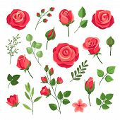 Red Roses. Burgundy Rose Flower Bouquets With Green Leaves And Buds. Watercolor Floral Romantic Deco poster