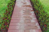 The Reddish Brown Wooden Walkway After Rain In The Garden. poster