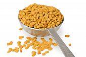 Fenugreek Seeds In Spoon
