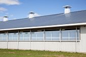 North American modern commercial dairy barn with a galvanized steel roof.