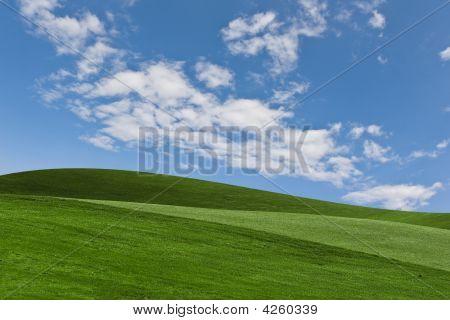 Scenic Background