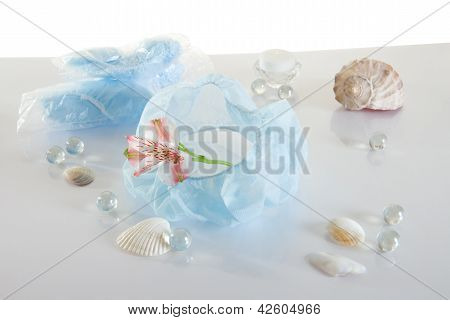 Spa Accessories - Disposable Bandage For Hair