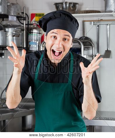 Portrait of happy male chef shouting in restaurant kitchen
