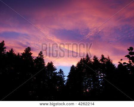 Kodiak Night Skies