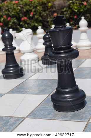 Black King In Outdoor Chess Set In Garden