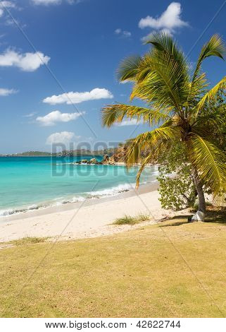 Beach Scene St Thomas Usvi