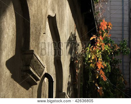 Fall colors on the wall