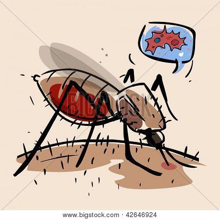 Dengue Fever Mosquito