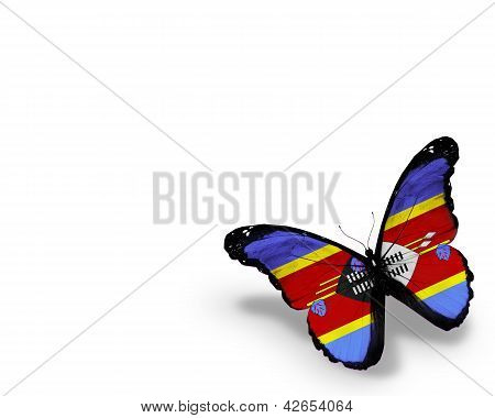 Swaziland Flag Butterfly, Isolated On White Background