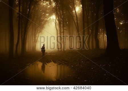 Man standing in a forest with fog near a pond