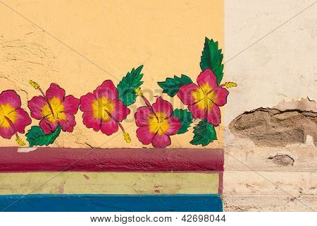 Wall flowers in Leon, Nicaragua