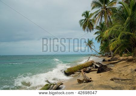 Caribbean coastline of Costa Rica