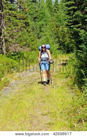 Backpacker On A Wilderness Trail