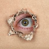pic of peep hole  - Curious espionage eye in hole in brown carton wall - JPG