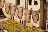 Animal Skins Drying In Fes Morocco poster