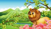 pic of mountain lion  - Illustration of a lion in a mountain view - JPG