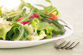 image of rocket salad  - Healthy vegetable salad with lettuce spring onion rocket salad tomatoes and radish - JPG