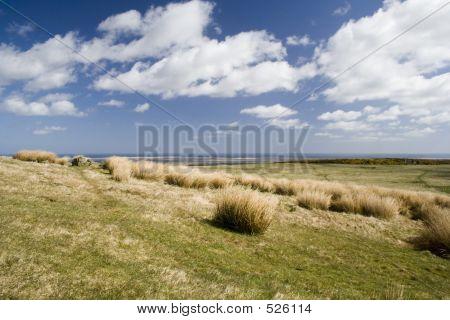 Rolling Hills & Blue Skies