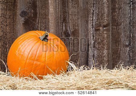 Pumpkin on hay against rustic wooden background