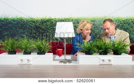 Male and female environmentalists working at desk in office