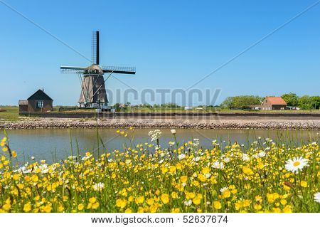 Windmill and wild flowers at Dutch wadden island Texel