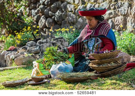 CUZCO, PERU - JULY 15: woman with natural dyes in the peruvian Andes at Cuzco Peru on july 15th 2013.  In the Andes of Peru every village has its own weaving patterns and traditions.