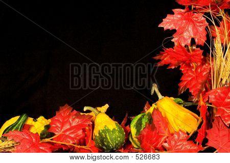 Frontera de otoño Iii