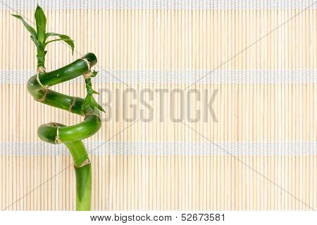 Bamboo  On The   Straw Mat Background