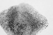 stock photo of fingerprint  - A single black fingerprint on a white background - JPG