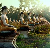 stock photo of buddhist  - Buddhas statue garden - JPG