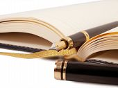 picture of fountains  - fountain pen and open diary book  - JPG