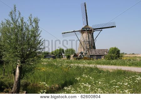 Traditional Dutch windmills
