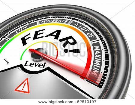 Fear Conceptual Meter