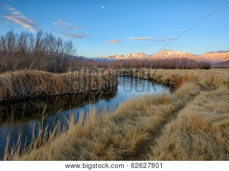 Owens River Morning