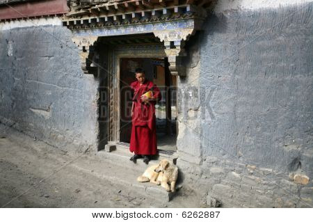 Young tibetan lama with a dog
