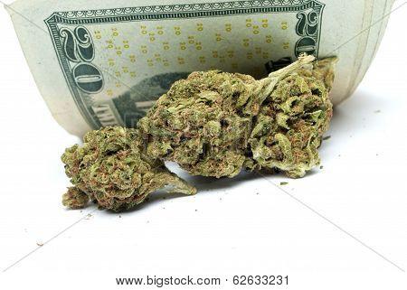 Marijuana Drug Money