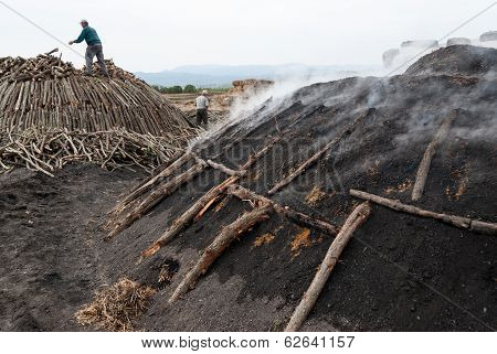 Working In Charcoal Production