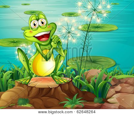 Illustration of a frog above the stump near the pond