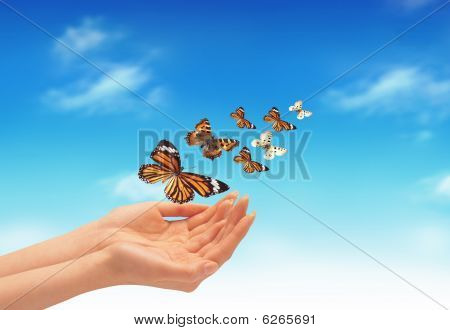 Hand And Butteflies
