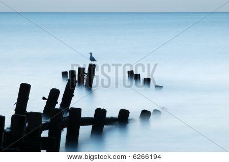 Moonlit Sea, Norfolk