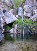 pic of darwin  - Darwin falls at oasis in Death Valley National Park - JPG