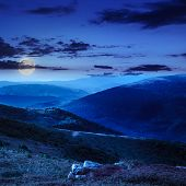 stock photo of moon-flower  - high wild grass and purple flowers at the top of the mountain at night in moon light - JPG