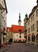 pic of wane  - Old city Tallinn Estonia - JPG